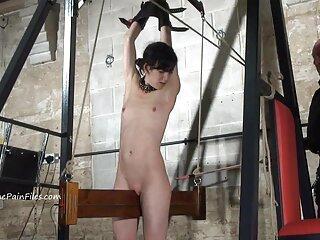 نوک سکس خارجی با کیفیت سینه های آرامش دهنده Ester B